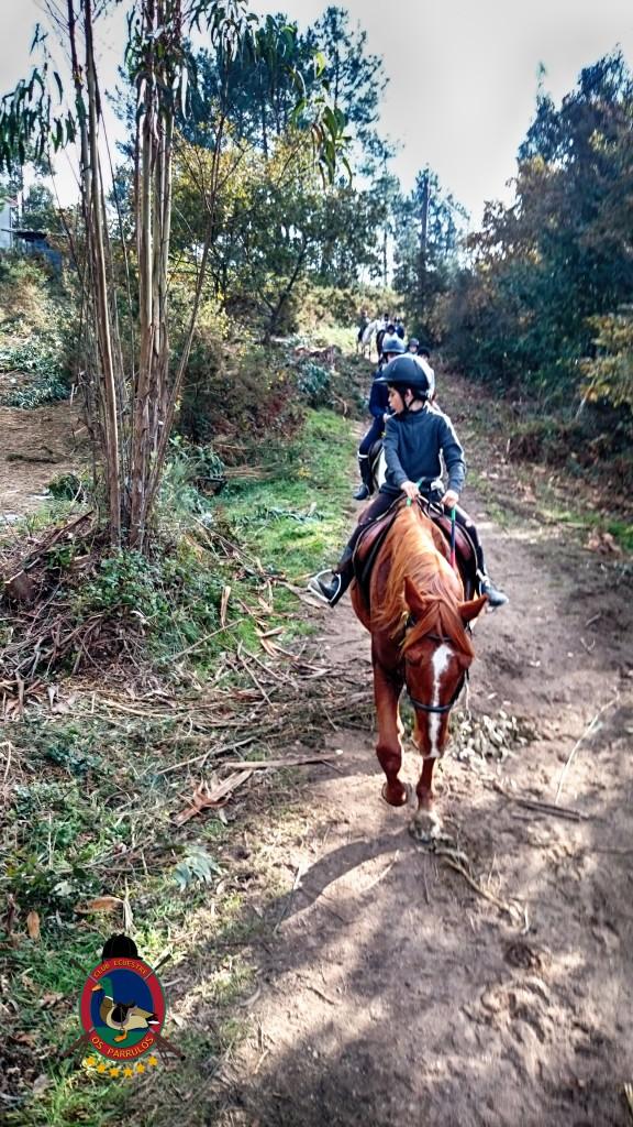 Os Parrulos_Hipica La Coruña_clases de equitación_cl3