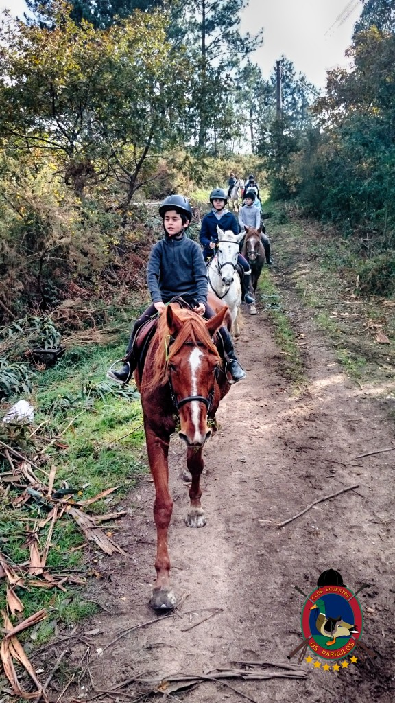 Os Parrulos_Hipica La Coruña_clases de equitación_cl4