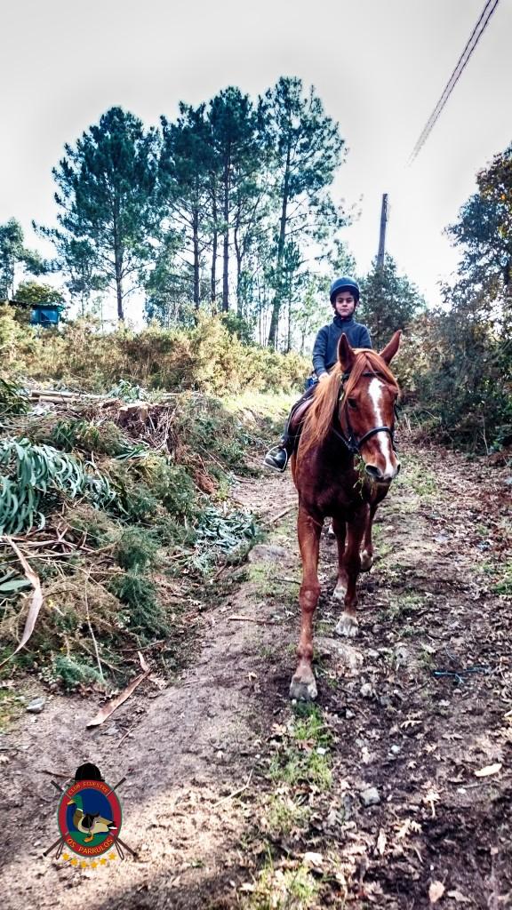 Os Parrulos_Hipica La Coruña_clases de equitación_cl5