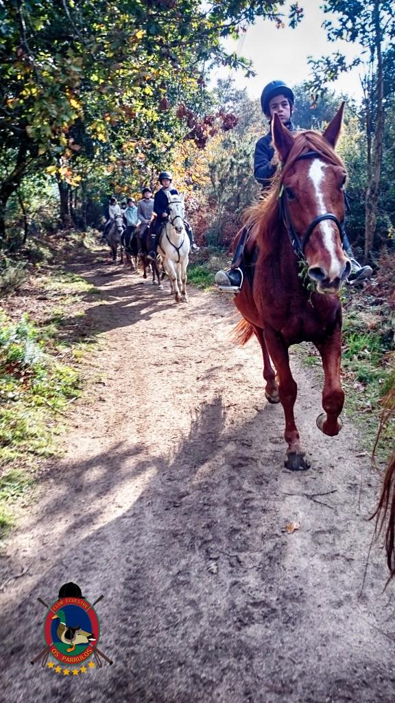 Os Parrulos_Hipica La Coruña_clases de equitación_cl7