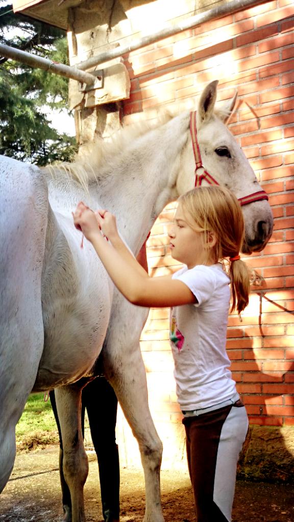 Os Parrulos_Zoura_caballo_07