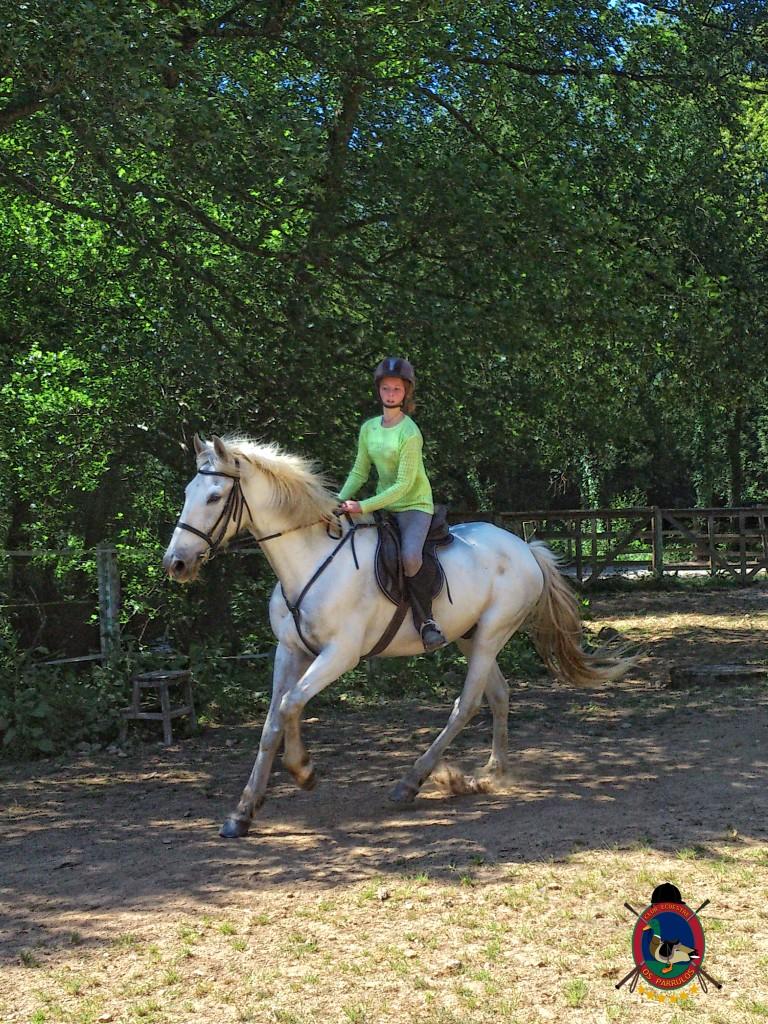 Os Parrulos_Zoura_caballo_09