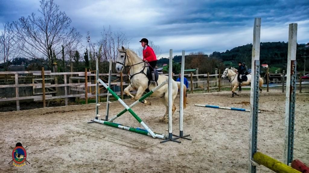 Os Parrulos_clases de equitación_hípica La Coruña_z10