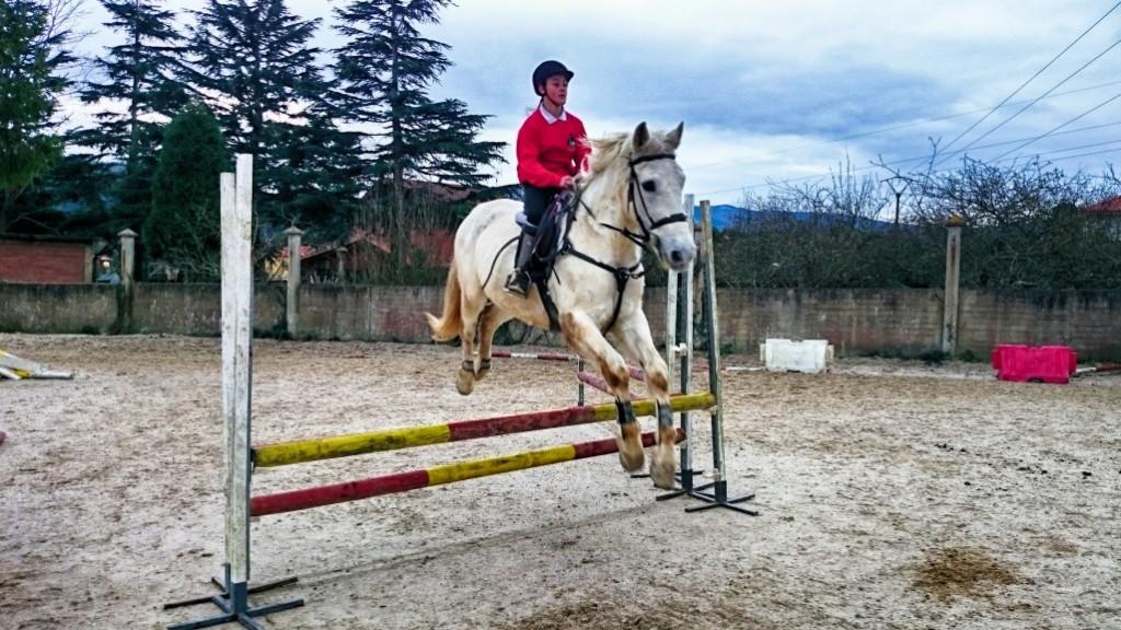 Os Parrulos_clases de equitación_hípica La Coruña_z12