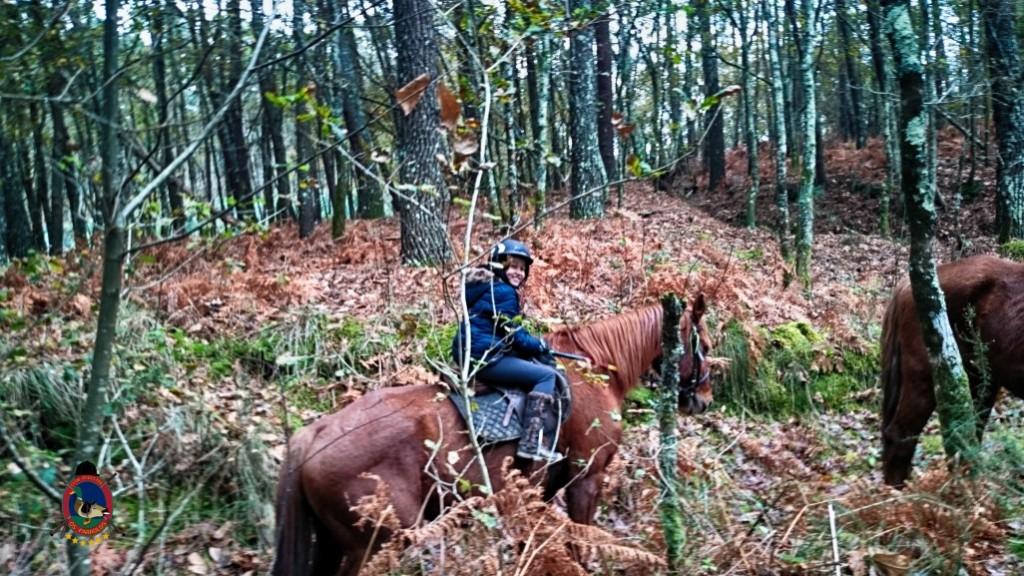 Os Parrulos_clases de equitación_hípica La Coruña_z18