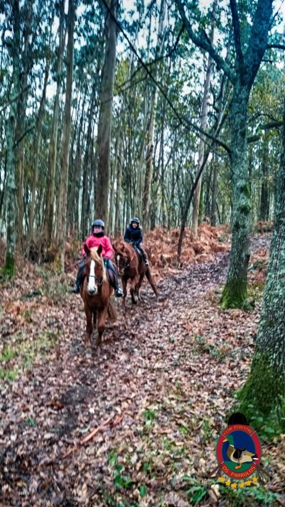 Os Parrulos_clases de equitación_hípica La Coruña_z19