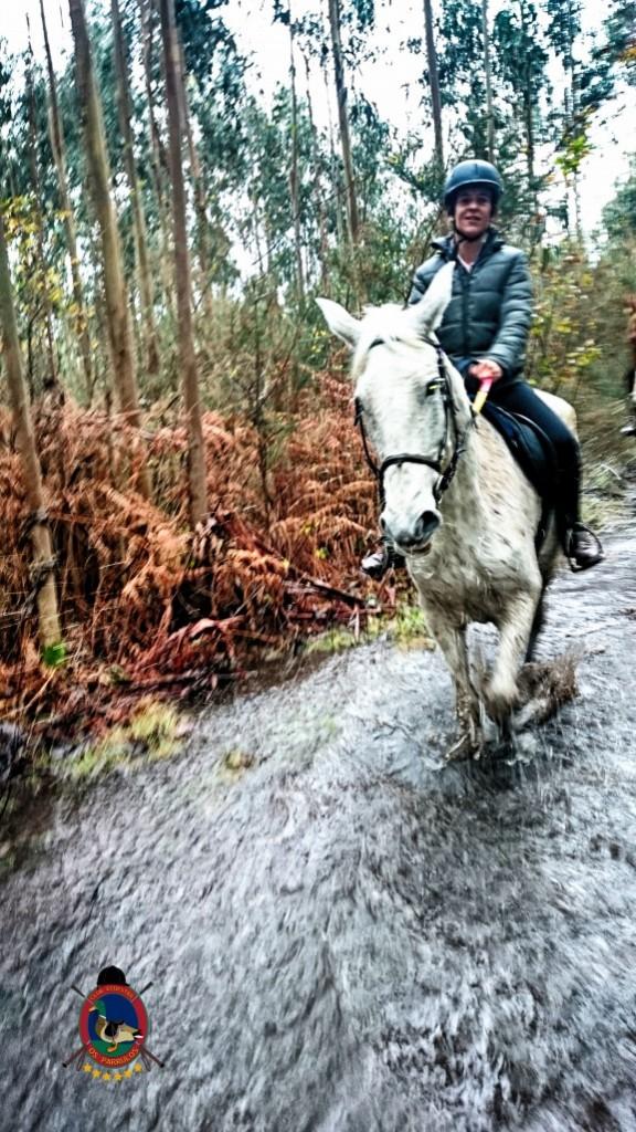 Os Parrulos_clases de equitación_hípica La Coruña_z2