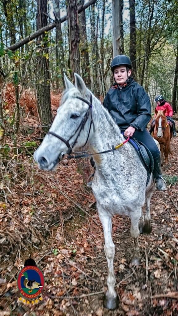 Os Parrulos_clases de equitación_hípica La Coruña_z20
