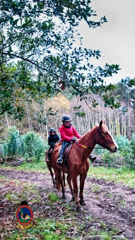Os Parrulos_clases de equitación_hípica La Coruña_z21