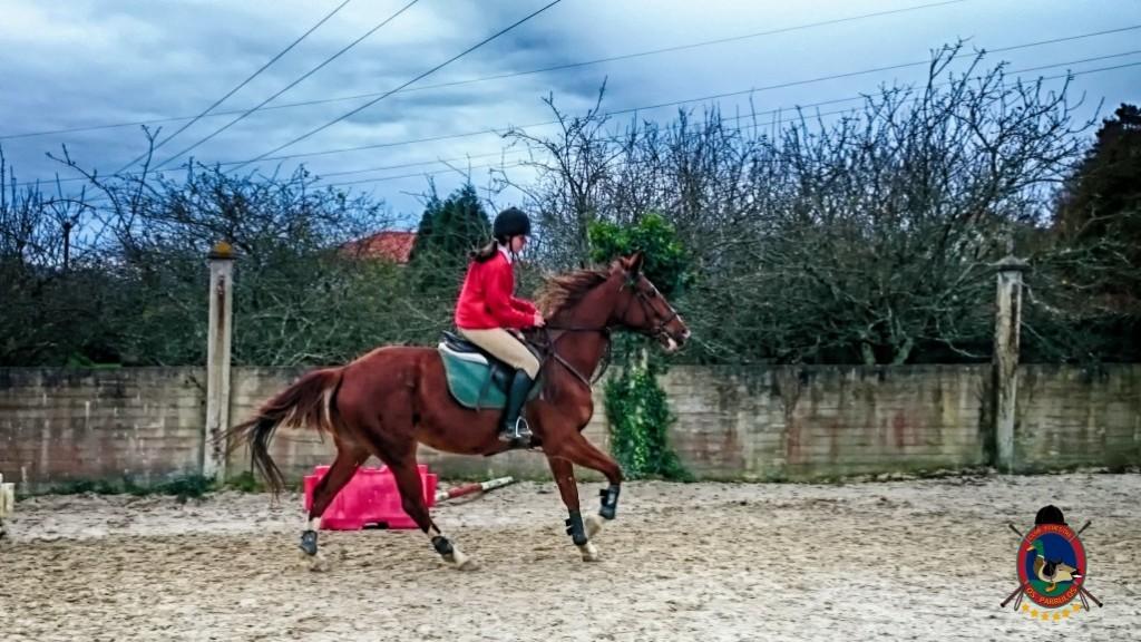 Os Parrulos_clases de equitación_hípica La Coruña_z4
