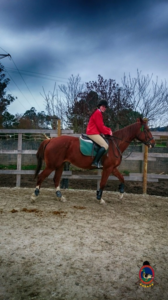 Os Parrulos_clases de equitación_hípica La Coruña_z5