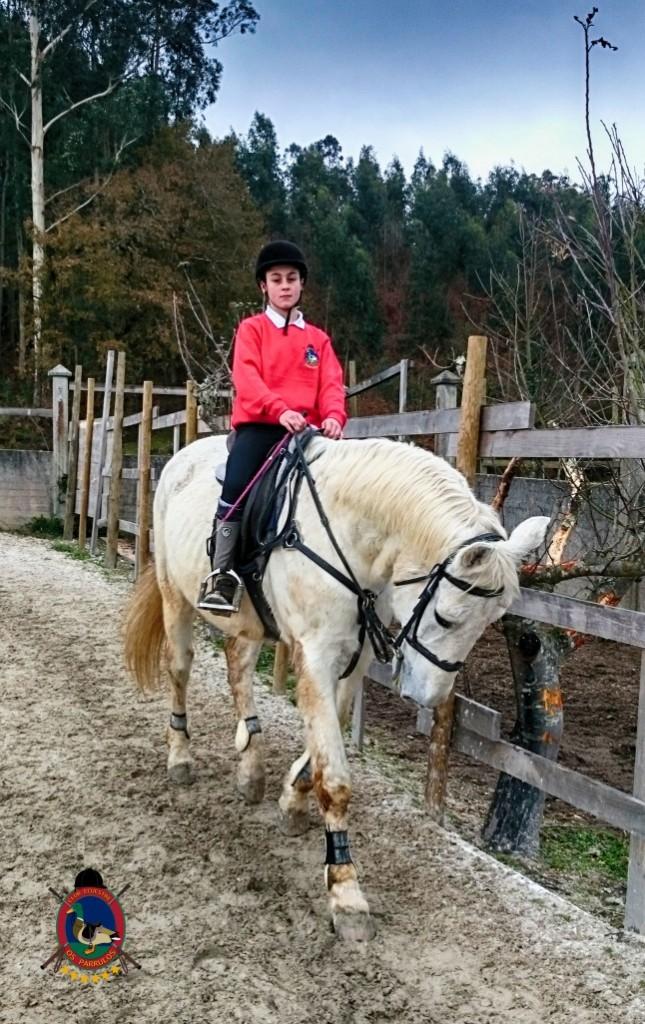Os Parrulos_clases de equitación_hípica La Coruña_z7