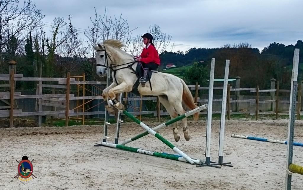 Os Parrulos_clases de equitación_hípica La Coruña_z9