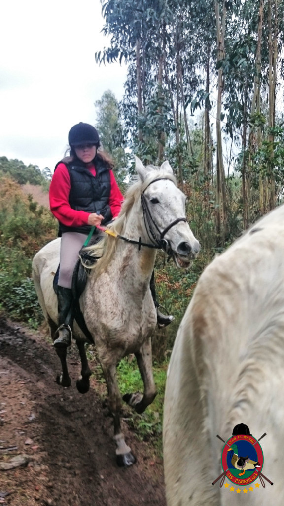 Os Parrulos_clases equitacion_hipica a coruna_R1