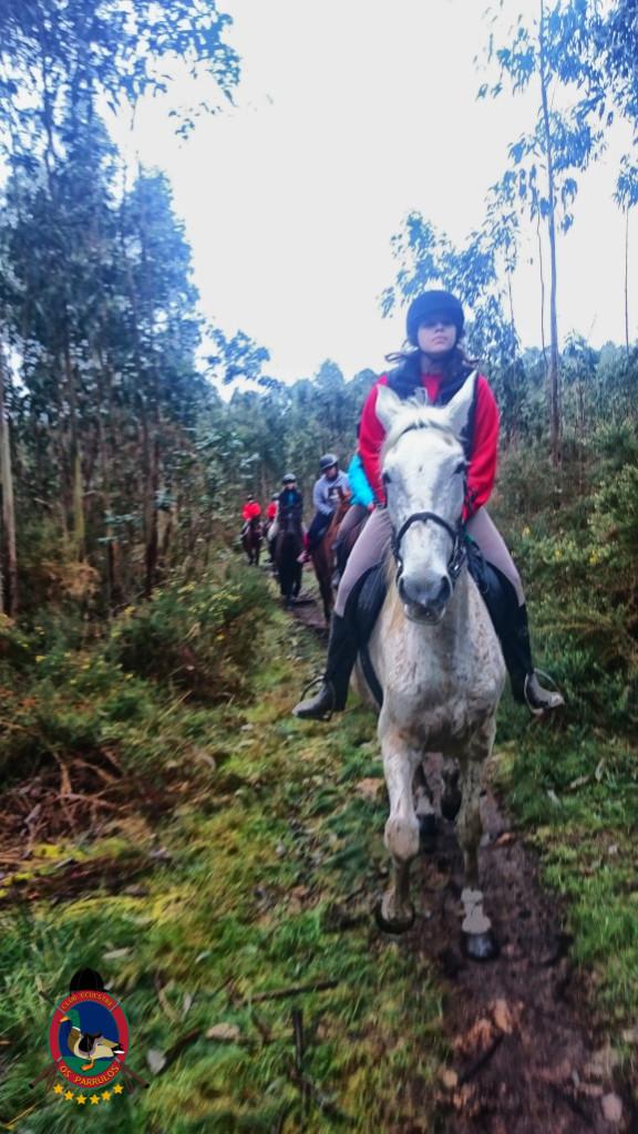 Os Parrulos_clases equitacion_hipica a coruna_R11