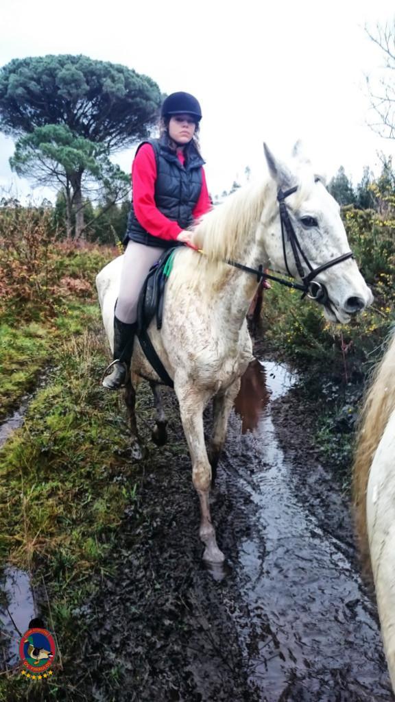 Os Parrulos_clases equitacion_hipica a coruna_R6