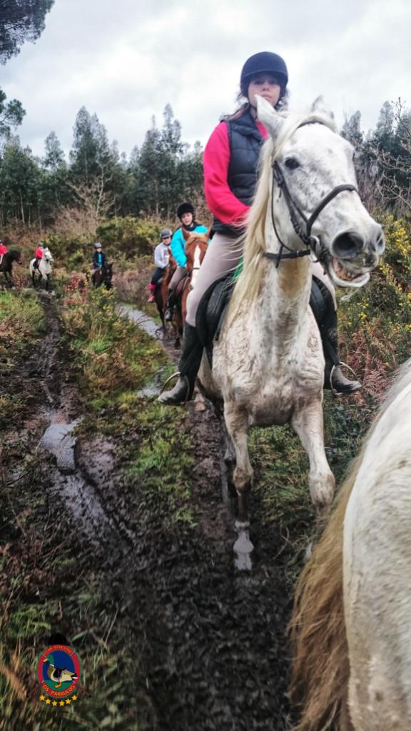 Os Parrulos_clases equitacion_hipica a coruna_R7