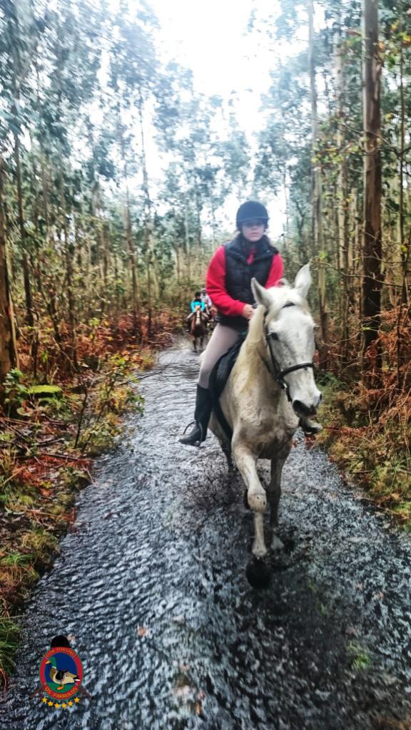 Os Parrulos_clases equitacion_hipica a coruna_R9