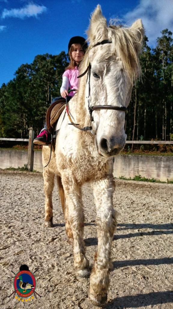 Os Parrulos_hipica La Coruna_clases de equitacion-N12