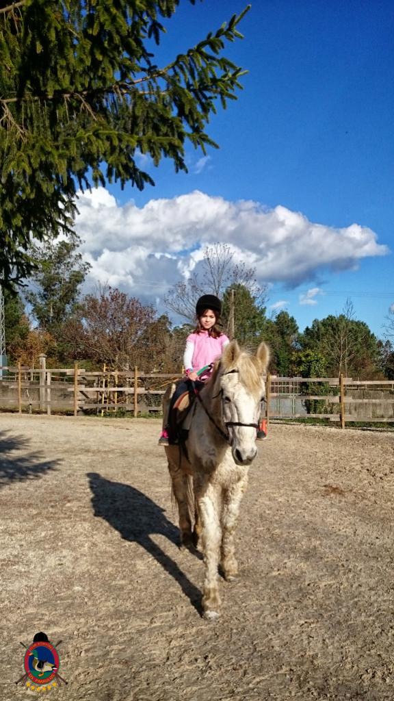 Os Parrulos_hipica La Coruna_clases de equitacion-N14