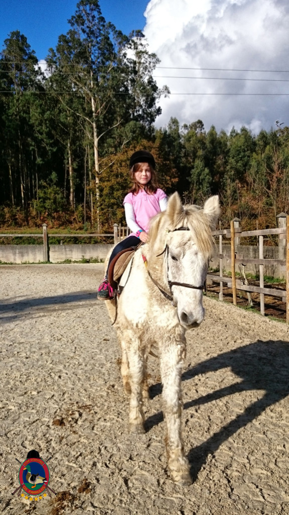 Os Parrulos_hipica La Coruna_clases de equitacion-N16