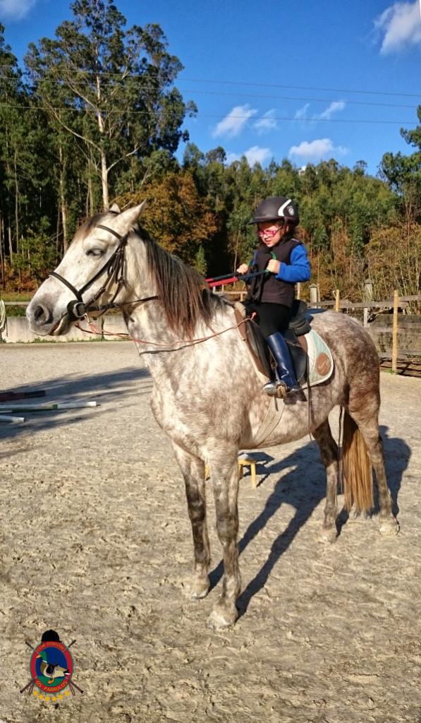 Os Parrulos_hipica La Coruna_clases de equitacion-N3