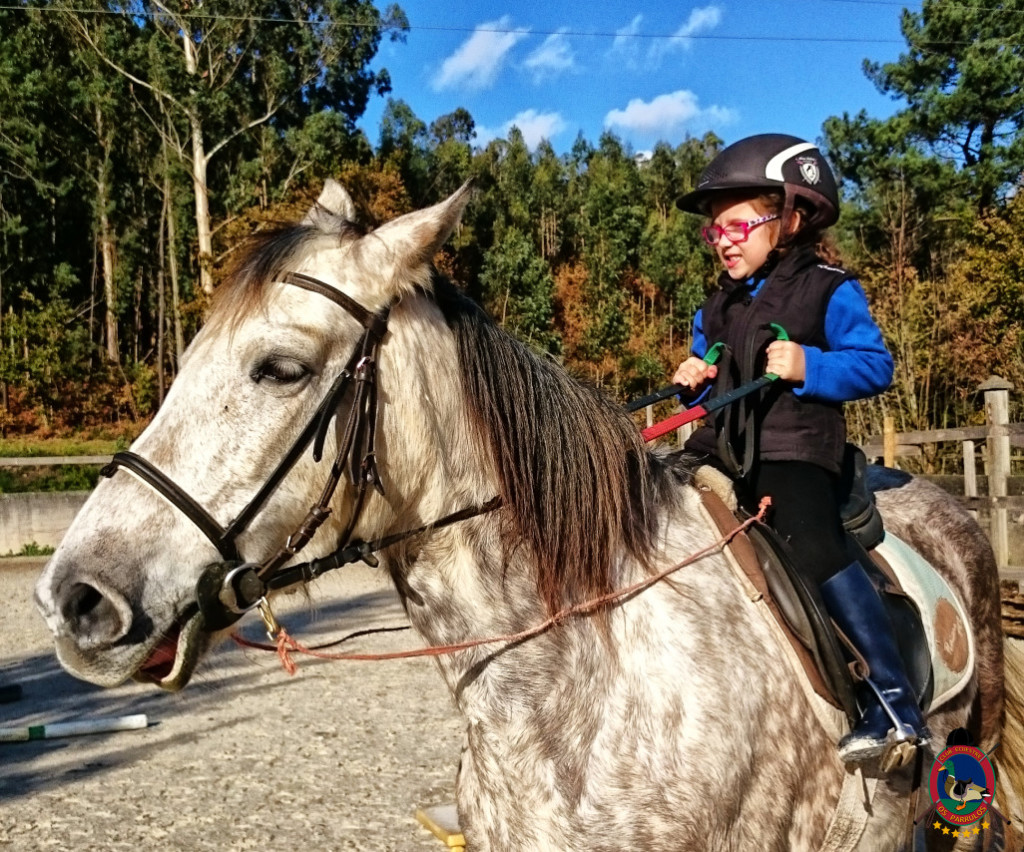 Os Parrulos_hipica La Coruna_clases de equitacion-N4