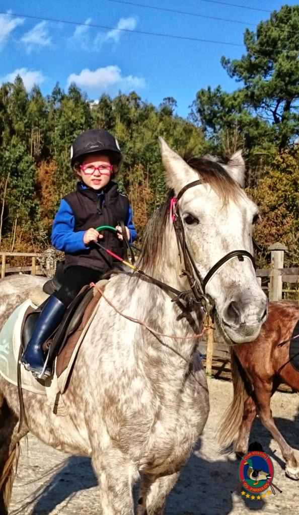Os Parrulos_hipica La Coruna_clases de equitacion-N5