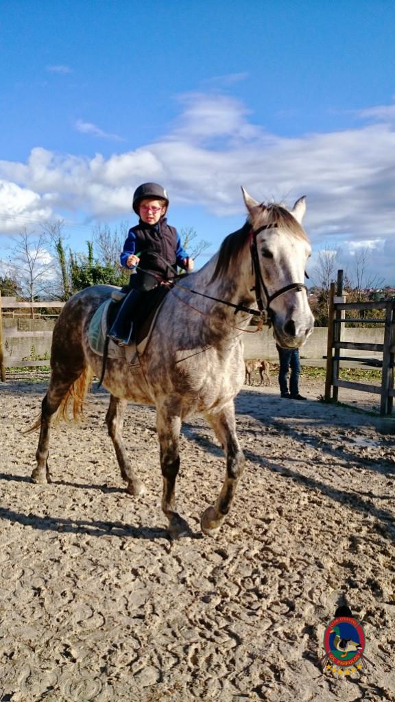 Os Parrulos_hipica La Coruna_clases de equitacion-N8