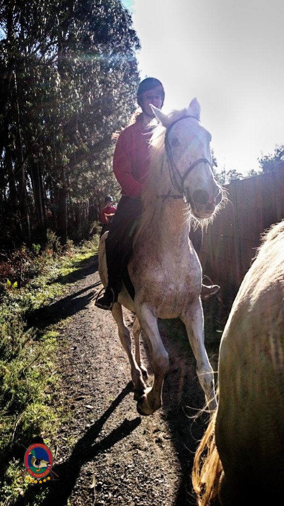 Os Parrulos_rutas a caballo_La Coruna_L12