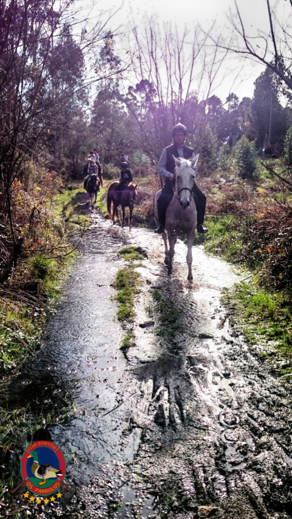 Os Parrulos_rutas a caballo_La Coruna_L21