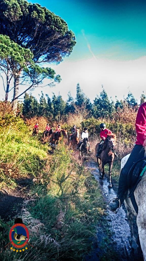 Os Parrulos_rutas a caballo_La Coruna_L23