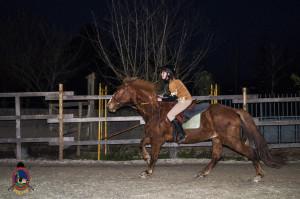 Os parrulos_clases de equitacion_hipica la coruna_Hp11