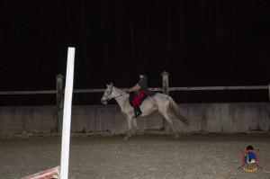 Os parrulos_clases de equitacion_hipica la coruna_Hp12