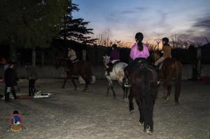 Os parrulos_clases de equitacion_hipica la coruna_Hp13