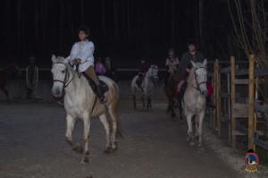 Os parrulos_clases de equitacion_hipica la coruna_Hp15