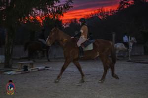 Os parrulos_clases de equitacion_hipica la coruna_Hp18