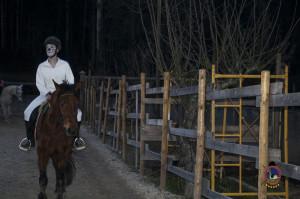 Os parrulos_clases de equitacion_hipica la coruna_Hp21