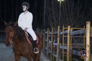 Os parrulos_clases de equitacion_hipica la coruna_Hp26