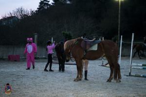 Os parrulos_clases de equitacion_hipica la coruna_Hp27