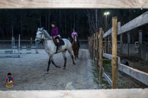 Os parrulos_clases de equitacion_hipica la coruna_Hp28