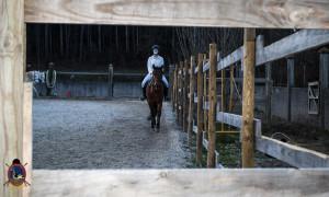 Os parrulos_clases de equitacion_hipica la coruna_Hp29