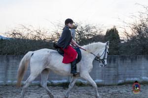 Os parrulos_clases de equitacion_hipica la coruna_Hp36