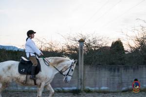 Os parrulos_clases de equitacion_hipica la coruna_Hp38