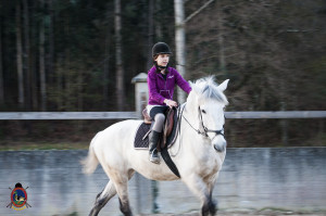 Os parrulos_clases de equitacion_hipica la coruna_Hp39
