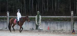 Os parrulos_clases de equitacion_hipica la coruna_Hp41