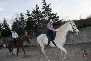 Os parrulos_clases de equitacion_hipica la coruna_Hp46
