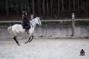 Os parrulos_clases de equitacion_hipica la coruna_Hp47