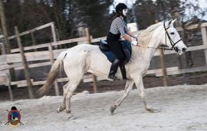 Os parrulos_clases de equitacion_hipica la coruna_Hp49