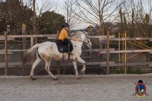 Os parrulos_clases de equitacion_hipica la coruna_Hp50